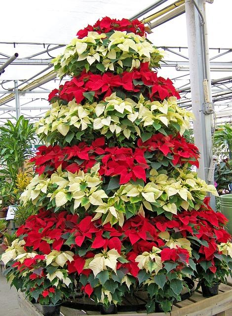 Vánoce trochu jinak aneb netypický vánoční stromeček